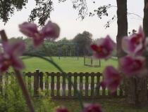 Vrij uitzicht voor huis (groen veld)